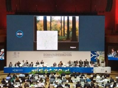 Forêt de Soignes - Comité
