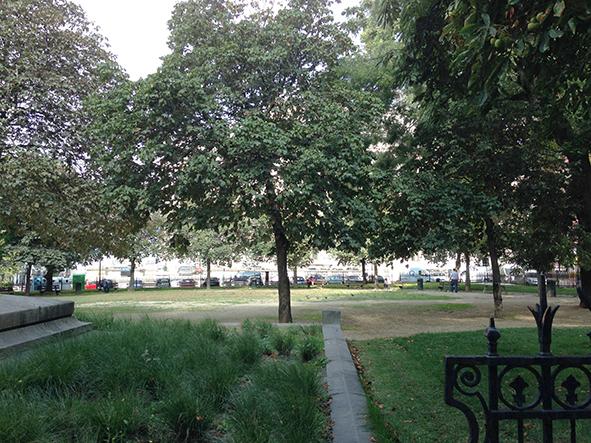 Le square avec ses arbres haute tiges